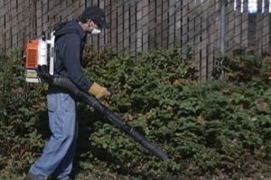 landscape power tool safety