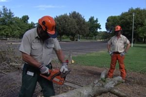 Safety Principles for Grounds Maintenance Workers